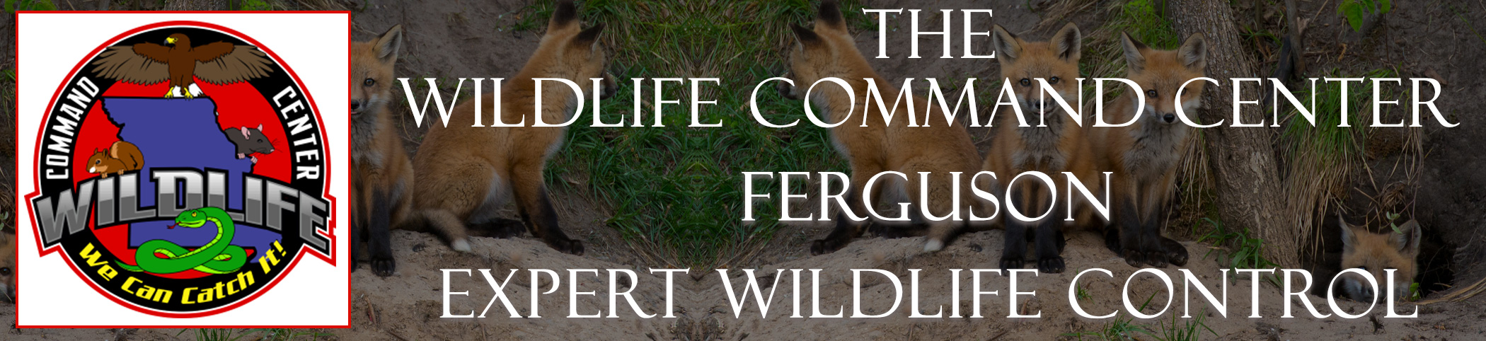 The Wildlife Command Center Ferguson Missouri Image