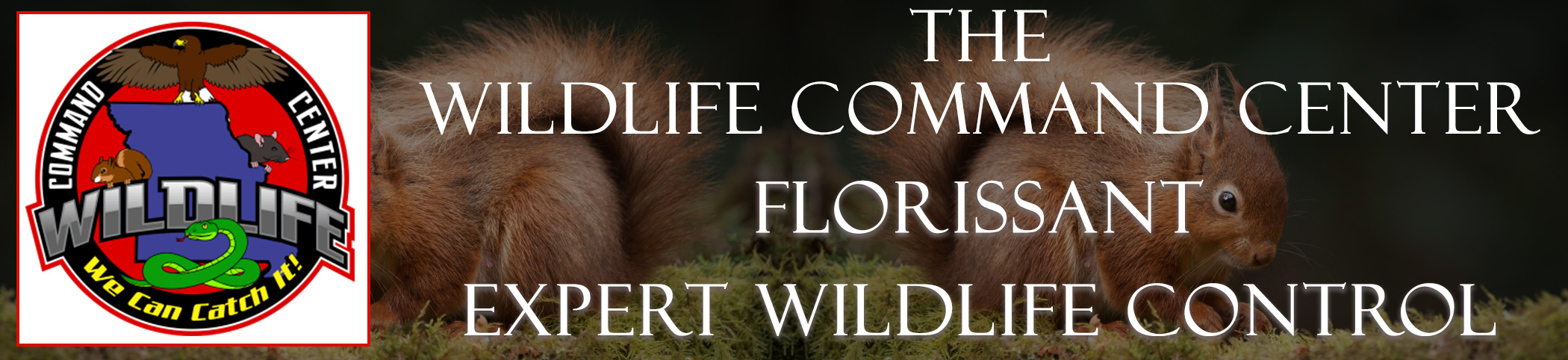 The Wildlife Command Center Florissant Missouri Image