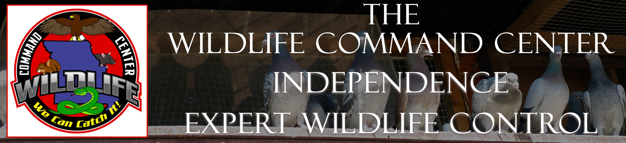 The Wildlife Command Center Independence Missouri Image