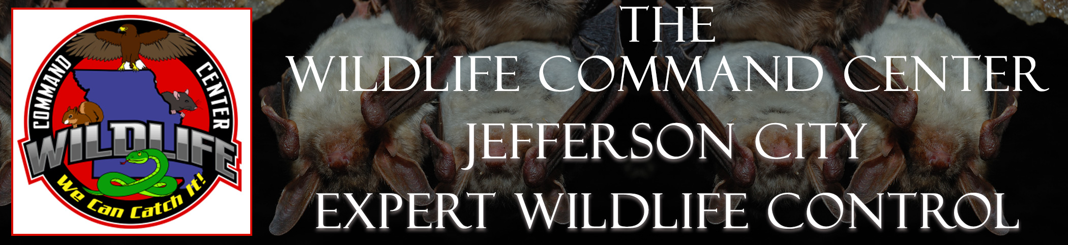 The Wildlife Command Center Jefferson City Missouri Image