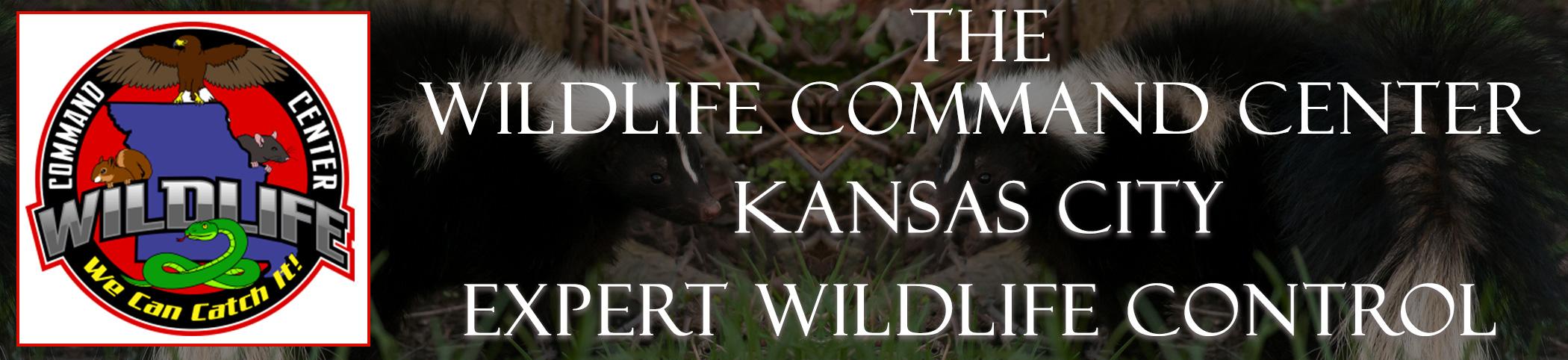 The Wildlife Command Center Kansas City Missouri Image