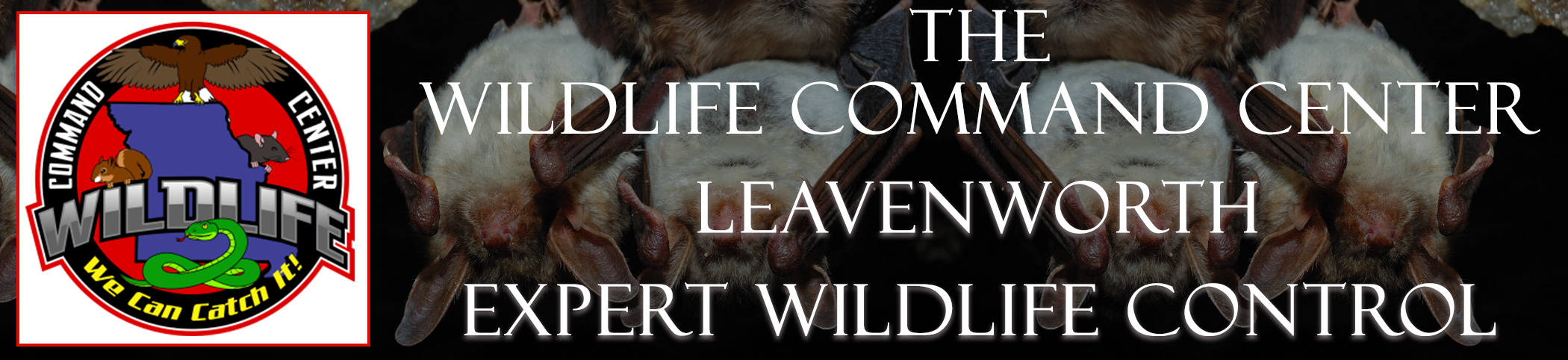 The Wildlife Command Center Leavenworth Kansas Image
