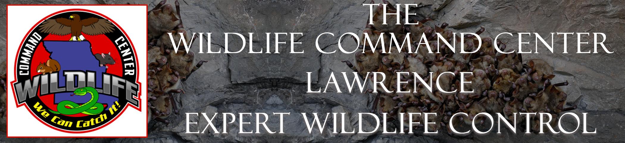 The Wildlife Command Center Lawrence Kansas Image