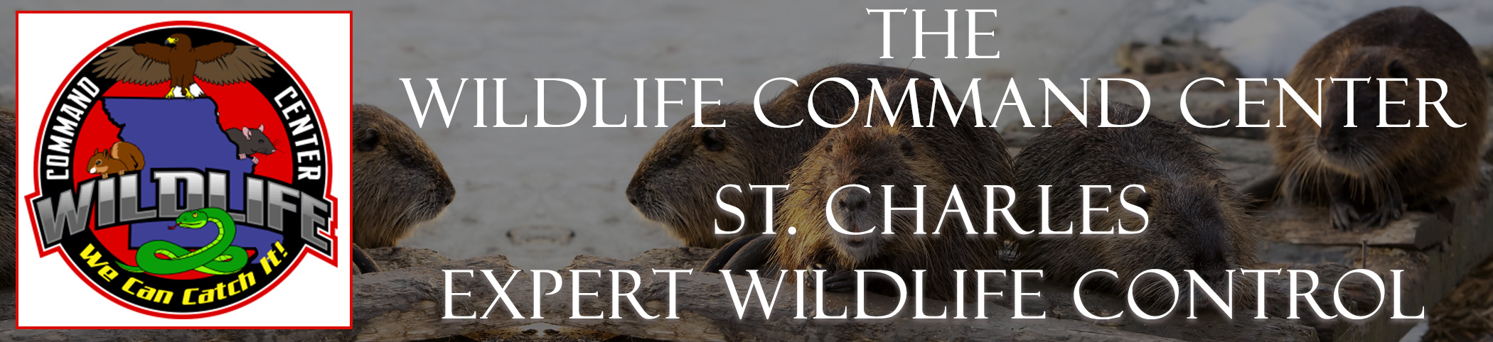 The Wildlife Command Center St. Charles Missouri Image