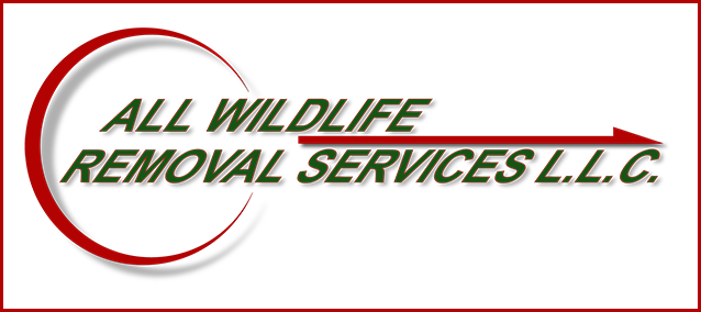 all-wildlife-removal-new-jersey-badge-the-best
