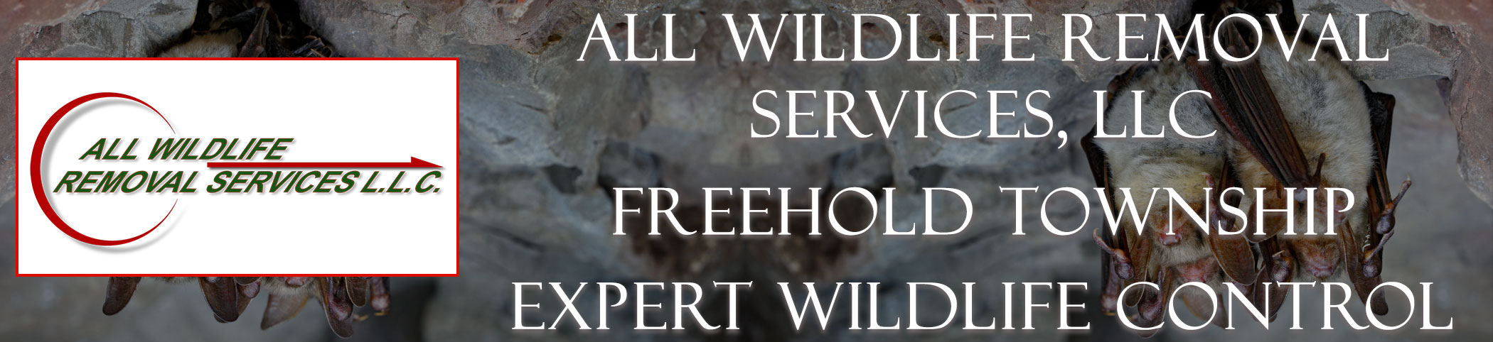 all-wildlife-removal-services-Freehold-Township-new-jersey-header