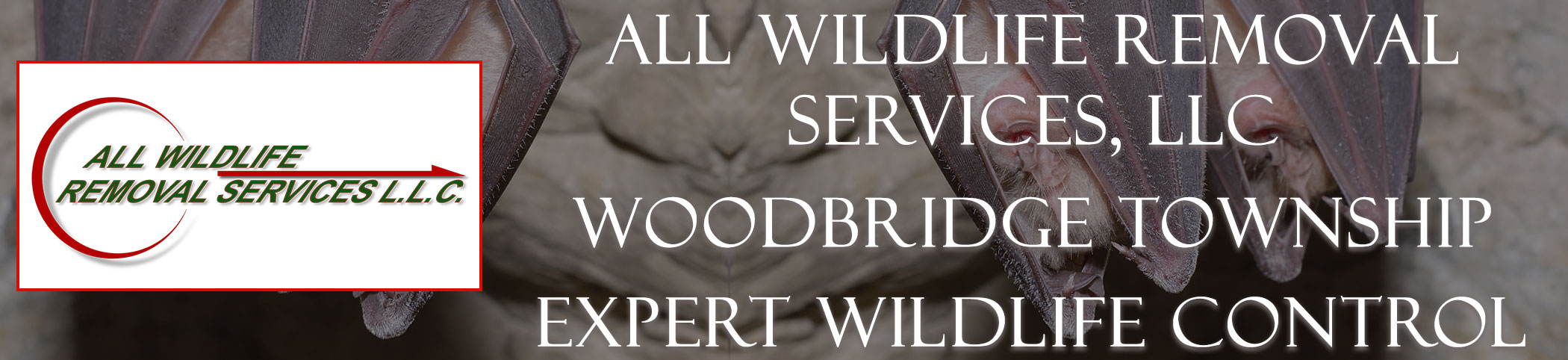 all-wildlife-removal-services-Woodbridge-Township-new-jersey-header