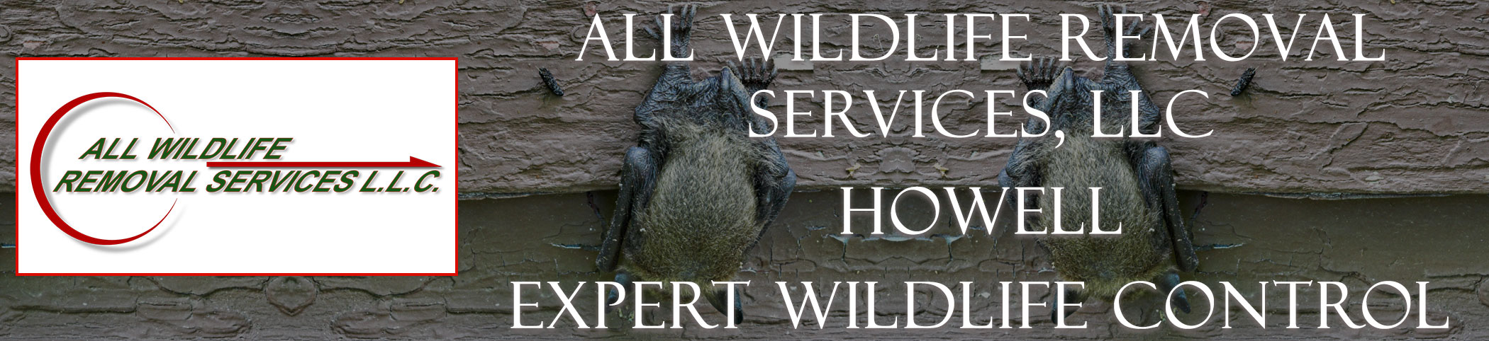 all-wildlife-removal-services-howell-new-jersey-header