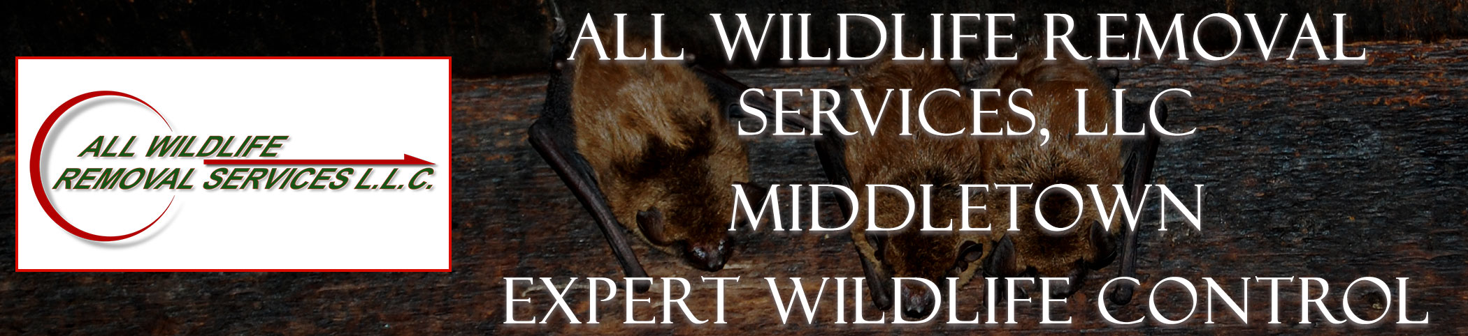 all-wildlife-removal-services-middletown-new-jersey-header