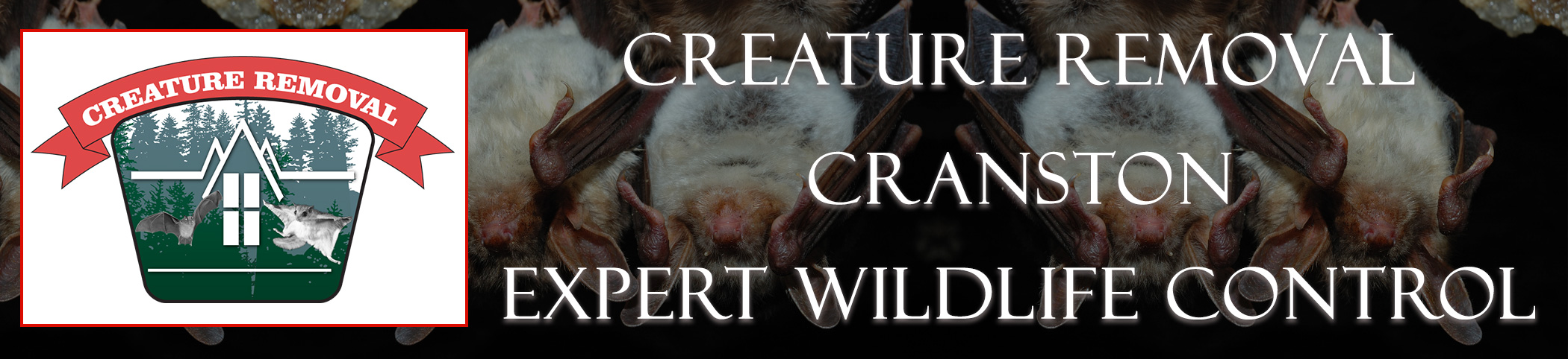 cranston-rhode-island-creature-removal-header