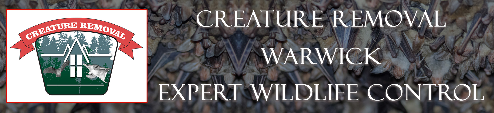 warwick-rhode-island-creature-removal-header