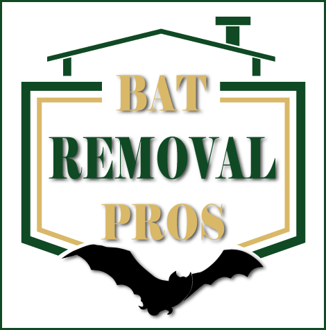 How To Get Rid Of Bats Logo