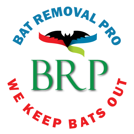 round-bat-removal-pro-badge