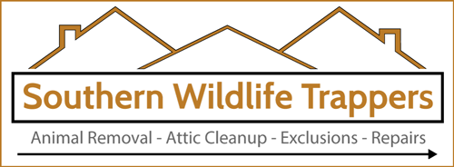 digital-brand-for-southern-wildlife-trappers