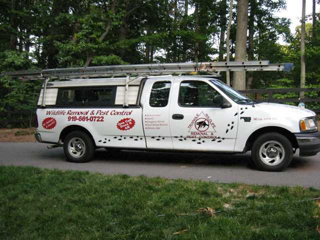 Raleigh Bat Removal by Raleigh Wildlife Removal has a many trucks in their fleet.