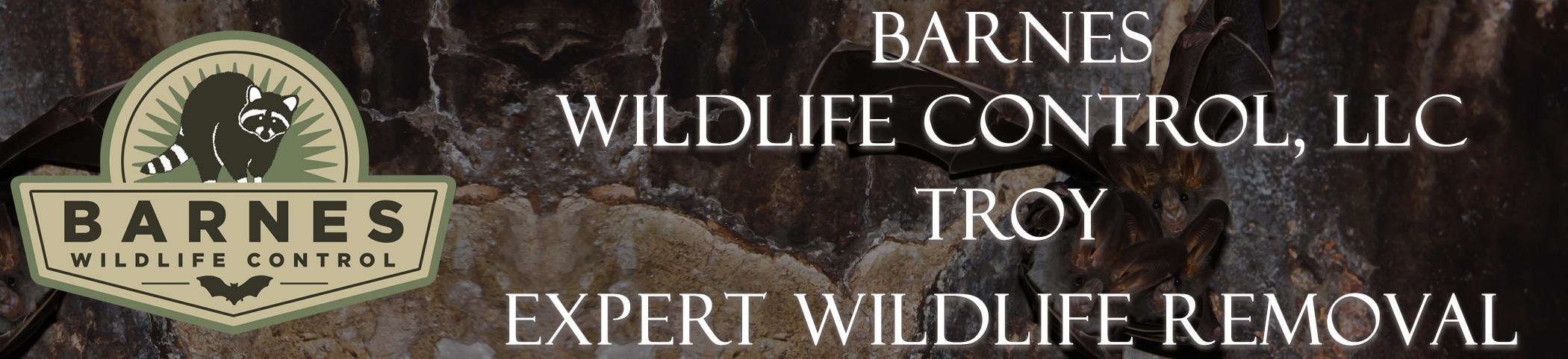 barnes_wildlife_troy_ohio_headers