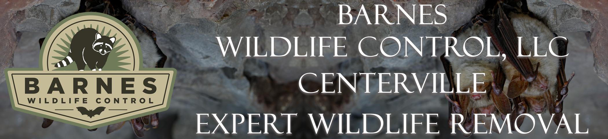 barnes_wildlife_centerville_ohio_headers