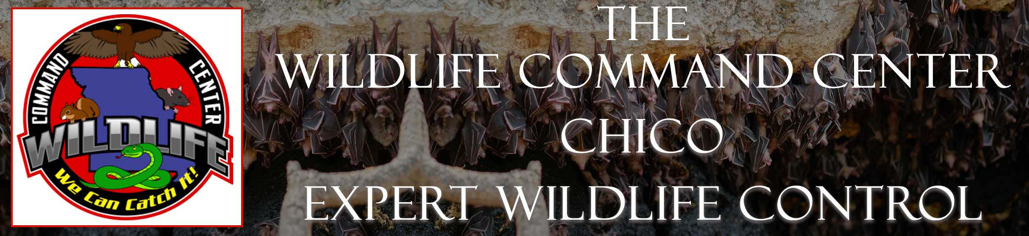 chico-wildlife-command-center