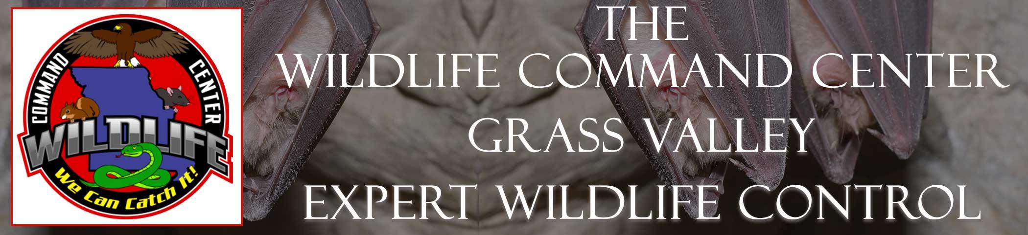 grass-valley-wildlife-command-center