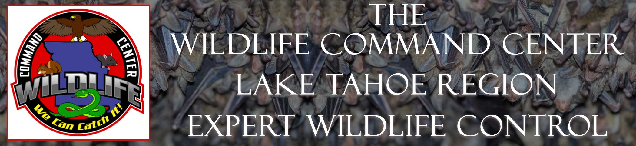 lake-tahoe-region-wildlife-command-center