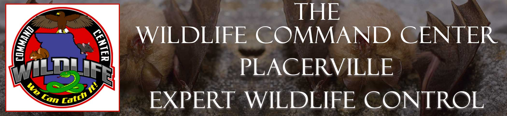 placerville-wildlife-command-center