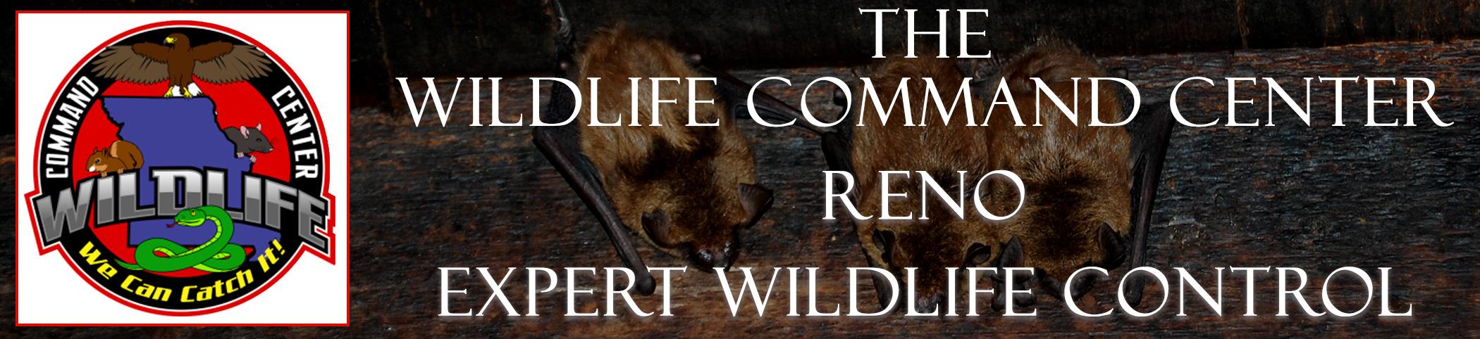 reno-wildlife-command-center