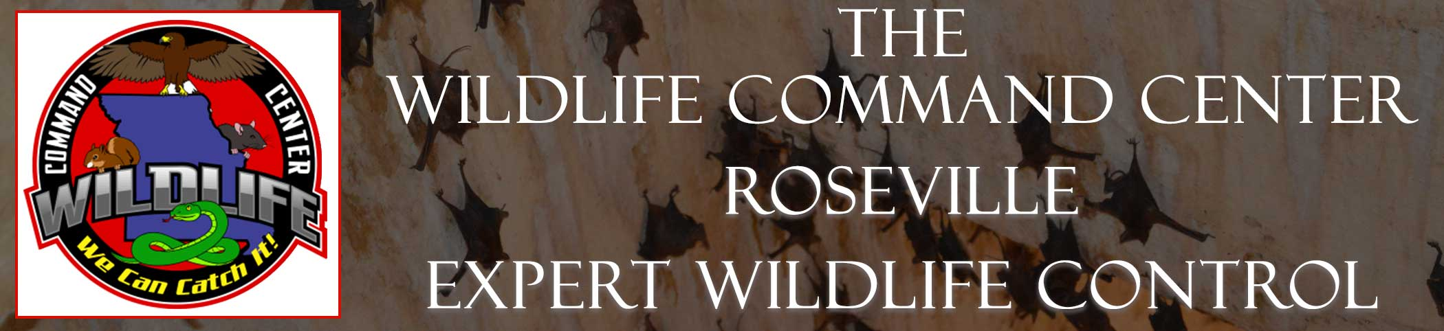 roseville-wildlife-command-center