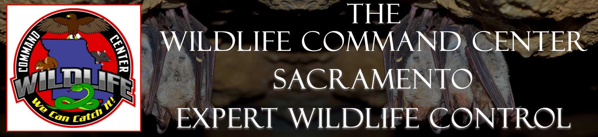 sacramento-wildlife-command-center