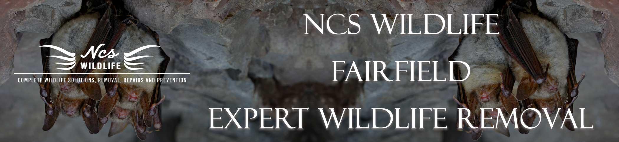 ncs-wildlife-fairfield
