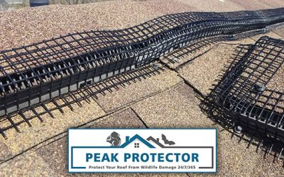 Peak Protector – Quality Ridge Vent Pest Guard Product