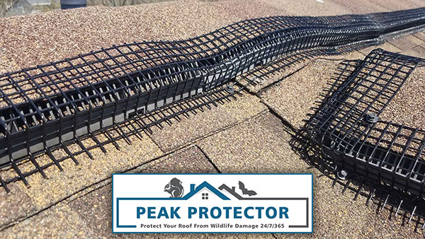 Newly installed Peak Protector that will protect your ridge vent and conform to uneven roof surfaces.