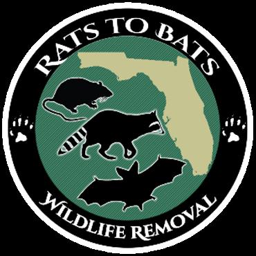 rats to bats logo